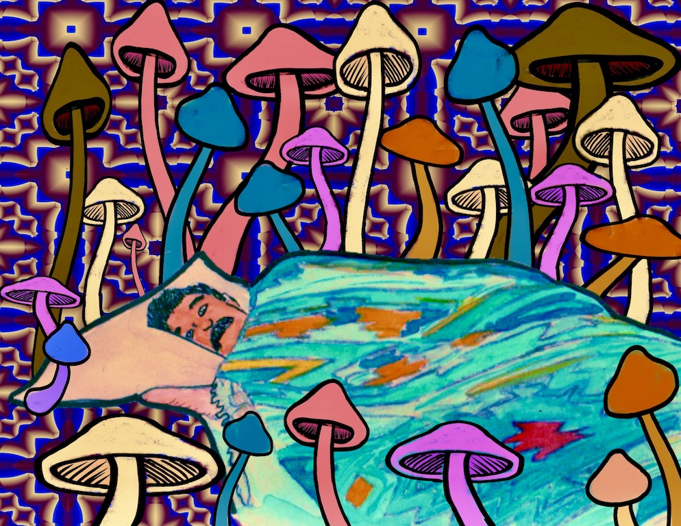 A Psychedelics Story